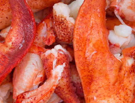 Fresh Maine Lobster Meat, , large
